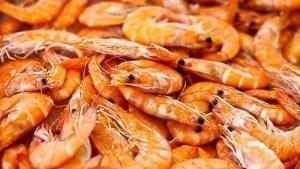 Contrôle d'inspection pour l'importation de crevettes congelées