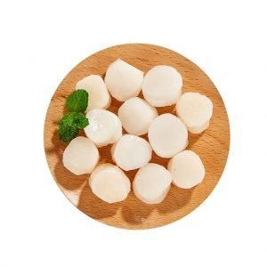Bay Scallop / Sea Scallop